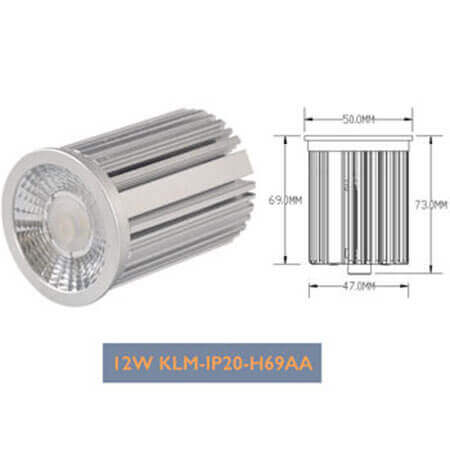 12W COB LED module down light
