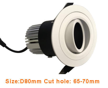 adjustable fitting for led module down light